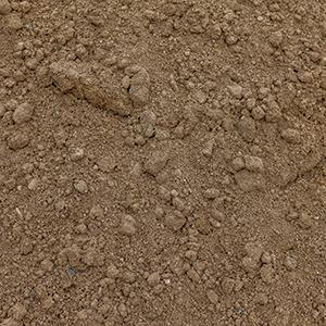 Sand Rock