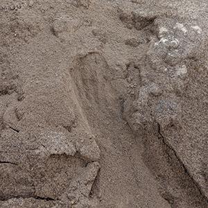 Pulverized Limestone